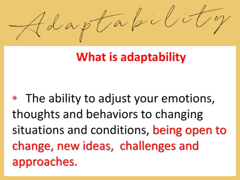 Adaptability - what is adaptability